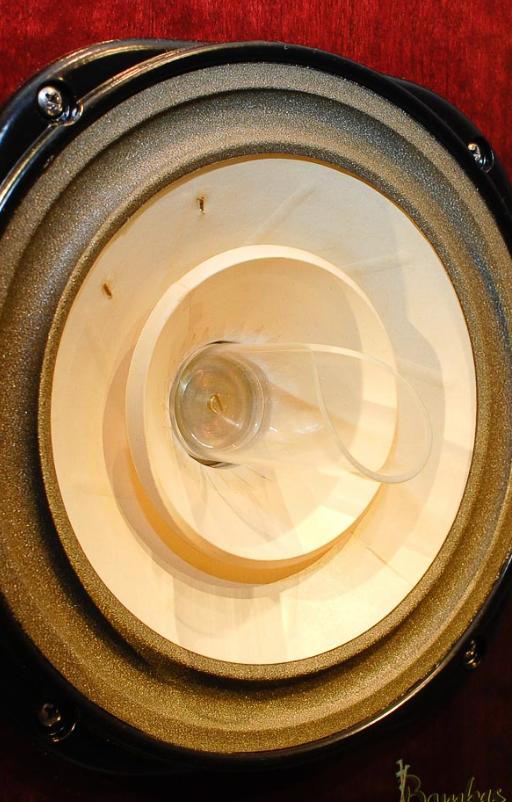Ein Lowther Breitband Lautsprecher mit Acryl Phase Plug