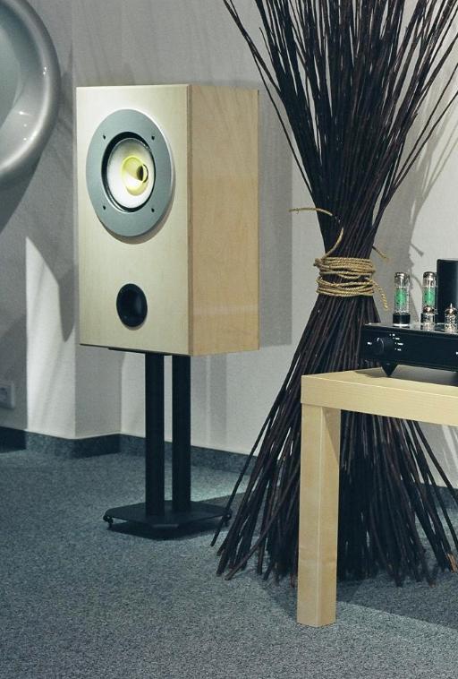 Eine Regalbox mit modifizierten Fostex Breitband Lautsprecher.